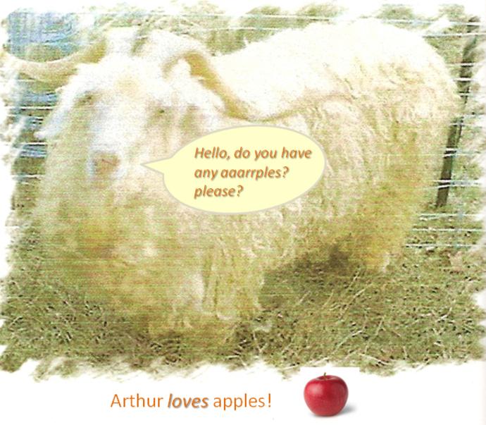 arthur(1)